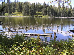 Riding mountain national park 3 - reflection.jpg