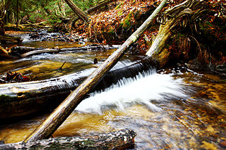 Rifle River - Image: Rifle River