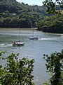River Dart from Greenway Gardens - geograph.org.uk - 192324.jpg