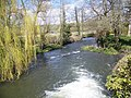 River Nadder, Tisbury Mill - geograph.org.uk - 740755.jpg