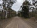 Road in Yerriyong, New South Wales.jpg