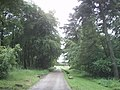 Road to Longshaw Lodge - geograph.org.uk - 1088964.jpg