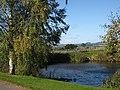 Roadside pond - geograph.org.uk - 991954.jpg