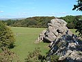 Roborough Rock, Yelverton (geograph 1843142).jpg