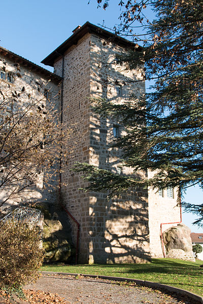 English:  Castle seen from the garden, church side