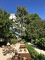Royal Botanical Garden in Madrid 30.jpg