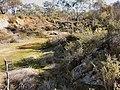 Rushworth VIC 3612, Australia - panoramio (3).jpg