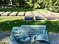 Russian soldiers section Krakow Military cemetery, Poland, 2015, 01.jpg