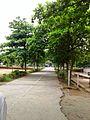 SAFG College, Channarayapatna.jpg