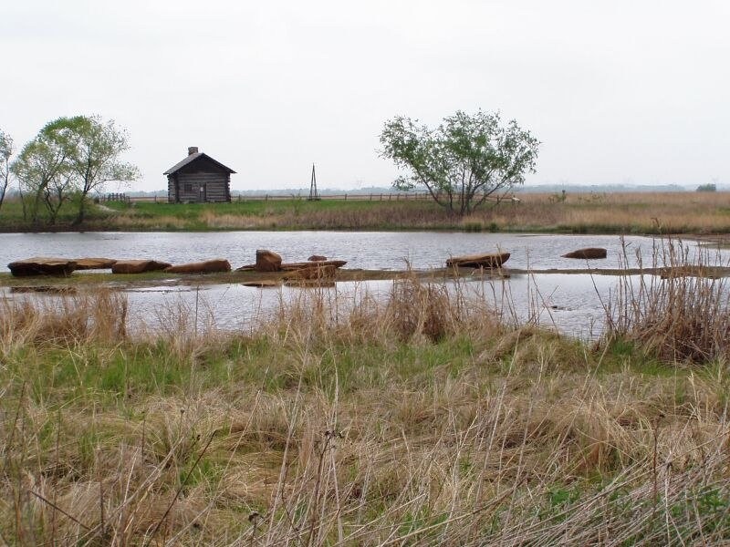 SR P5150084 GooseLake Prairie IL