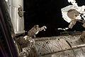 STS-135 EVA Mike Fossum 1.jpg