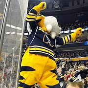 SABRETOOTH Buffalo Sabres Mascot Bobble Head NHL Bighead Limited ...