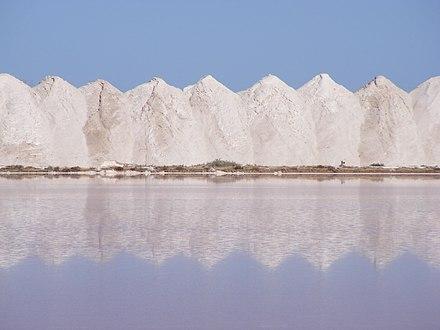 disfunción eréctil de sal marina