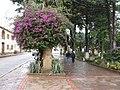 Samaipata, Bolivia - panoramio - vozachudo2004 (26).jpg