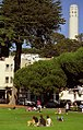 San Francisco - Washington Square & Coit Tower (939097273).jpg