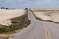 Sand buggying (8227129334).jpg