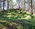 Schlossberg Vorderkrimml 03.jpg