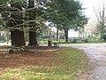 Seat within Staunton Countryside Park - geograph.org.uk - 1591830.jpg