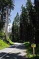 Seymour Valley Trailway - panoramio.jpg