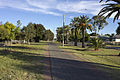 Shared path along Palm Ave in Leeton.jpg