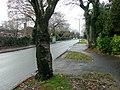 Sharmans Cross Road - looking west - geograph.org.uk - 1610944.jpg