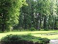 Siary zespół pałacowo-parkowy park nr A-201 (39).JPG