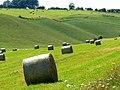 Silage awaiting the baler, near Little Cheverell - geograph.org.uk - 521592.jpg