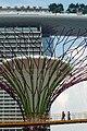 Singapore - panoramio (82).jpg
