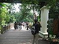Singapore Zoo 13.JPG