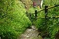 Sinhagadfort south enterance steps utsav.JPG