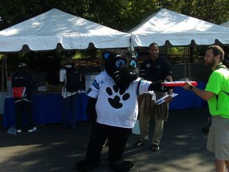 Carolina Panthers - Panthers mascot Sir Purr, wearing a white jersey