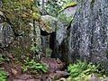 Skuleskogen National Park - stone corridor.jpg