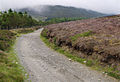 Slieu Curn - Sartfell Road. Isle of Man - geograph.org.uk - 33292.jpg