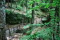 Smolarski vodopad 11.JPG