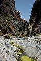 Snake Gorge (7).jpg