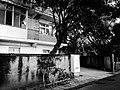 Snapshot, Jungli, Taoyuan, Taiwan, 馬祖新村, 中壢馬祖新村, 隨拍, 中壢, 桃園, 台灣 (15102316775).jpg