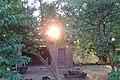 Sole tra i Rami - panoramio.jpg