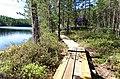 Southern Konnevesi National Park - duckboards.jpg