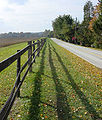 Split Rail Fence.JPG