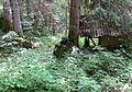 Spodnje Gorje Slovenia - Meadow 2 Mass Grave.JPG