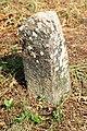 Spomenici na seoskom groblju u Nevadama (69).jpg