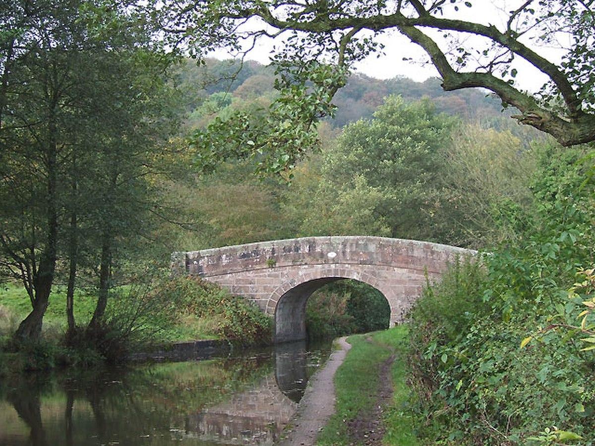 Spring's Bridge, Caldon Canal, Cheddleton, Staffordshire - geograph.org.uk - 590000.jpg