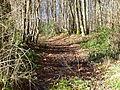 St-maurice-s-aveyron--ancienne route de Melleroy-2.JPG