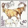 Stamp of Armenia - 1996 - Colnect 196134 - Wild Goat Capra aegagrus.jpeg