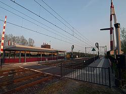 Station Grou.jpg