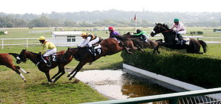 Steeplechase (horse racing) distance horse race in which competitors are required to jump diverse fence and ditch obstacles