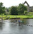 Stepping stones and Bolton Abbey - panoramio.jpg
