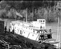 Sternwheeler MASCOT docked on river, probably vicinity of lower Columbia River, ca 1900 (TRANSPORT 837).jpg