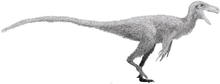 Stokesosaurus by Tom Parker.png