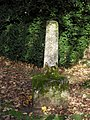 Stone pillar outside St. Mary,s churchyard, Castle Eaton - geograph.org.uk - 1596487.jpg